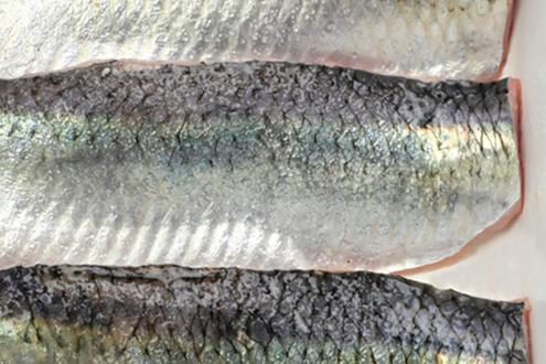 sardines hgt
